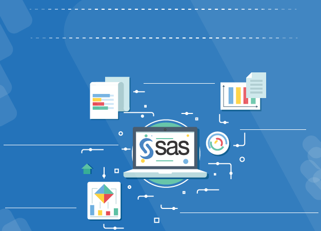 SAS Base & Advanced Training in Noida
