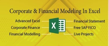Financial Modeling+Free SAP FICO